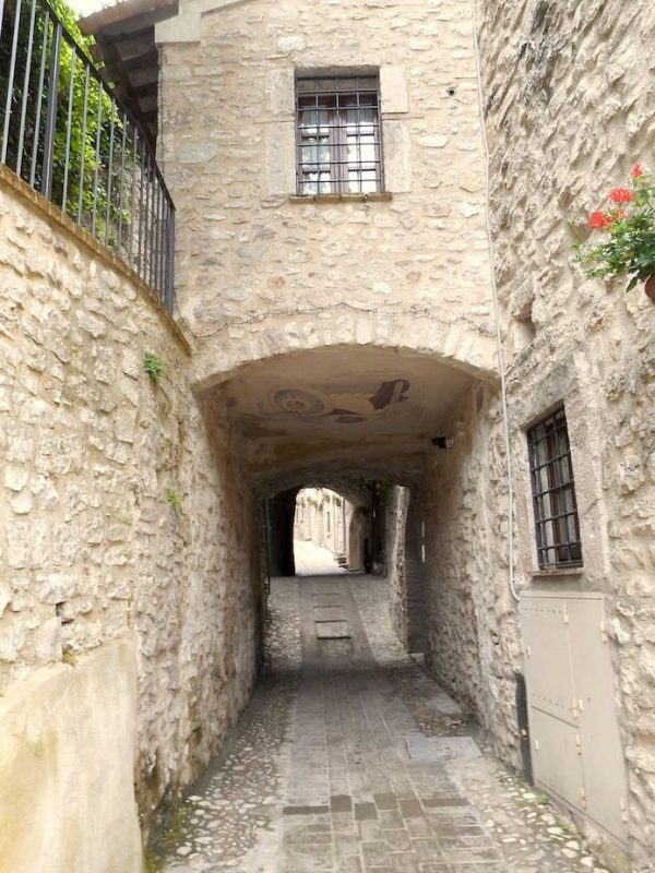 *P.della Torre